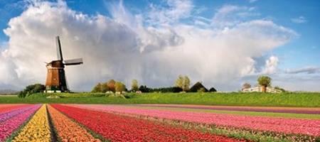 Olanda, la Giornata della Regina ed altri eventi