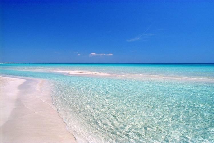 Quali sono le spiagge più belle della Puglia?