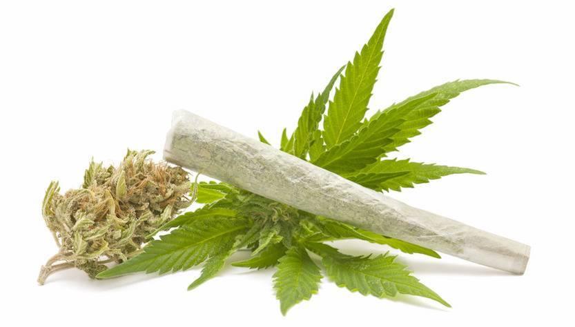 Dove è legale la marijuana in America?