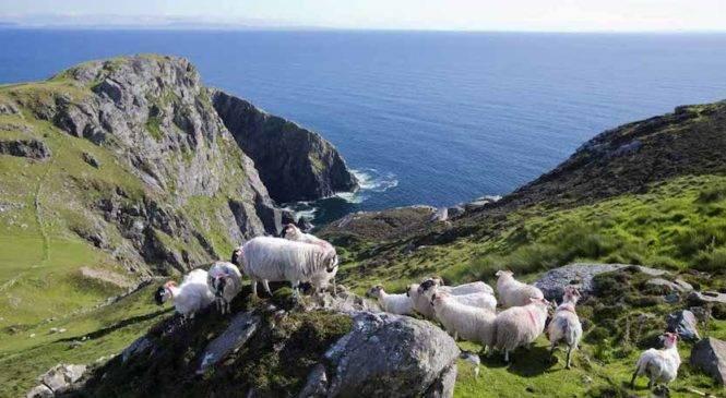 Visitare l'Irlanda in auto? 4 itinerari per te