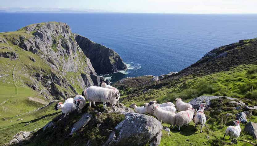 Panorama d'Irlanda