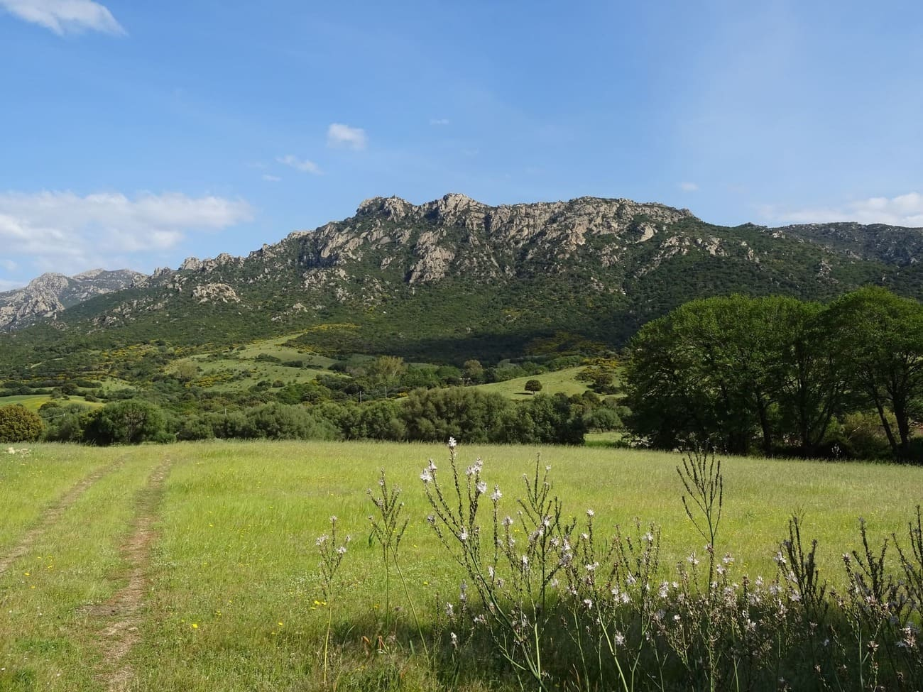 Cosa vedere a San Teodoro: Monte Nieddu