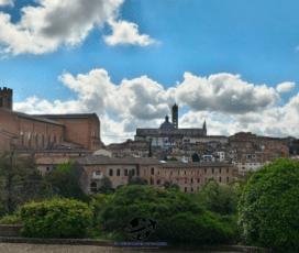 Visitare Siena in 2 giorni? Perché no!